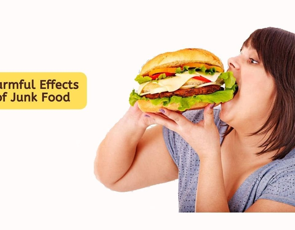 Harmful-Effects-of-Junk-Food