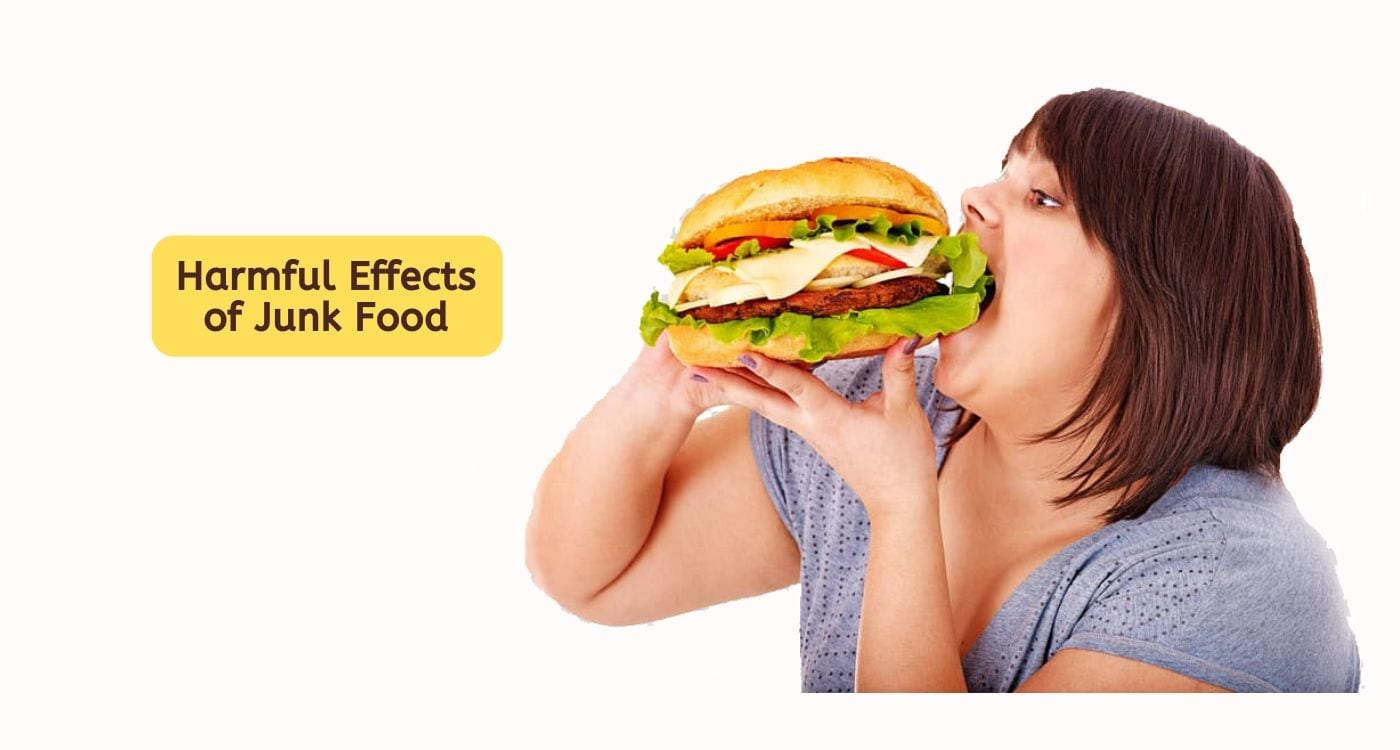 Harmful Effects of Junk Food: 12 Reasons to Avoid Them